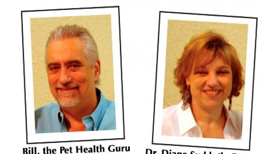 "Bill ""The Pet Health Guru"" and Dr. Diane"